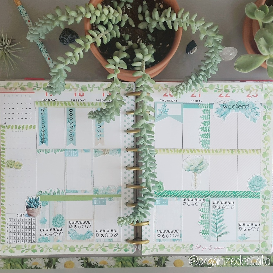 Succulents Planner Printable Weekly Spread
