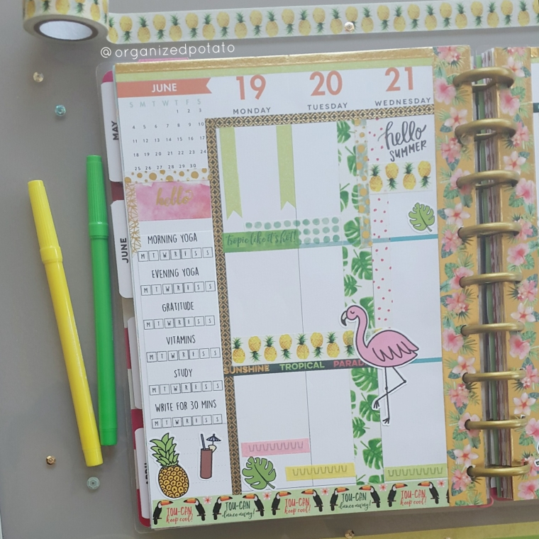 June 19-25 Weekly Spread [left page] #happyplanner #planner #plannerinspo #plannerideas #washi #washitape #summer #firstdayofsummer #tropical #flamingo #flamingos #pineapple #pineapples #monsteraleaf #tropicalleaf #tropicalleaves #erincindren #filofax #kikkik #freeprintable #plannerprintable