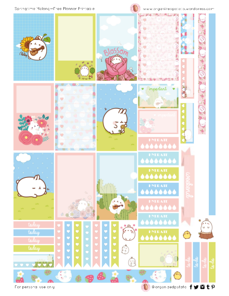 Springtime Molang - Free Printable for Happy Planner Classic #freeprintable #plannerprintable #happyplanner #planner #erincondren #filofax #bujo #bulletjournal #plannerideas #plannerinspiration #plannerinspo #molang #piupiu #kawaii #spring #springtime #summer #flowers #flower #floral