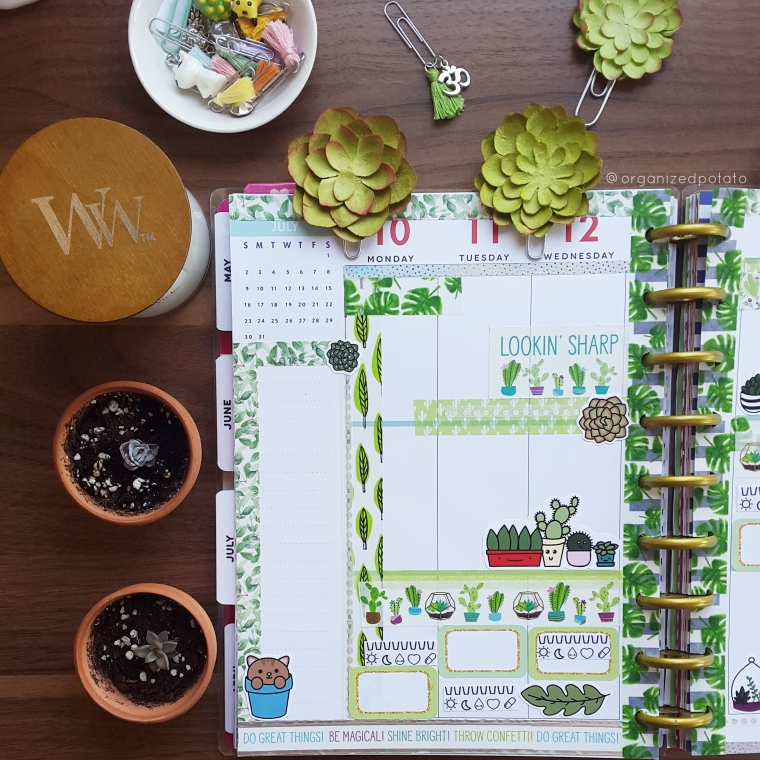 July 10-16 Weekly Spread #happyplanner #planner #succulent #succulents #leaf #leaves #tropicalleaf #tropicalleaves #cactus #cacti #plants #green #leaf #leaves #leafy #plannerideas #plannerinspo #plannerinspiration #cute #kawaii #yankeecandle #woodwick #michaels #hobbylobby #DIY #meandmybigideas #mambi #eclp #filofax #bujo #bulletjournal