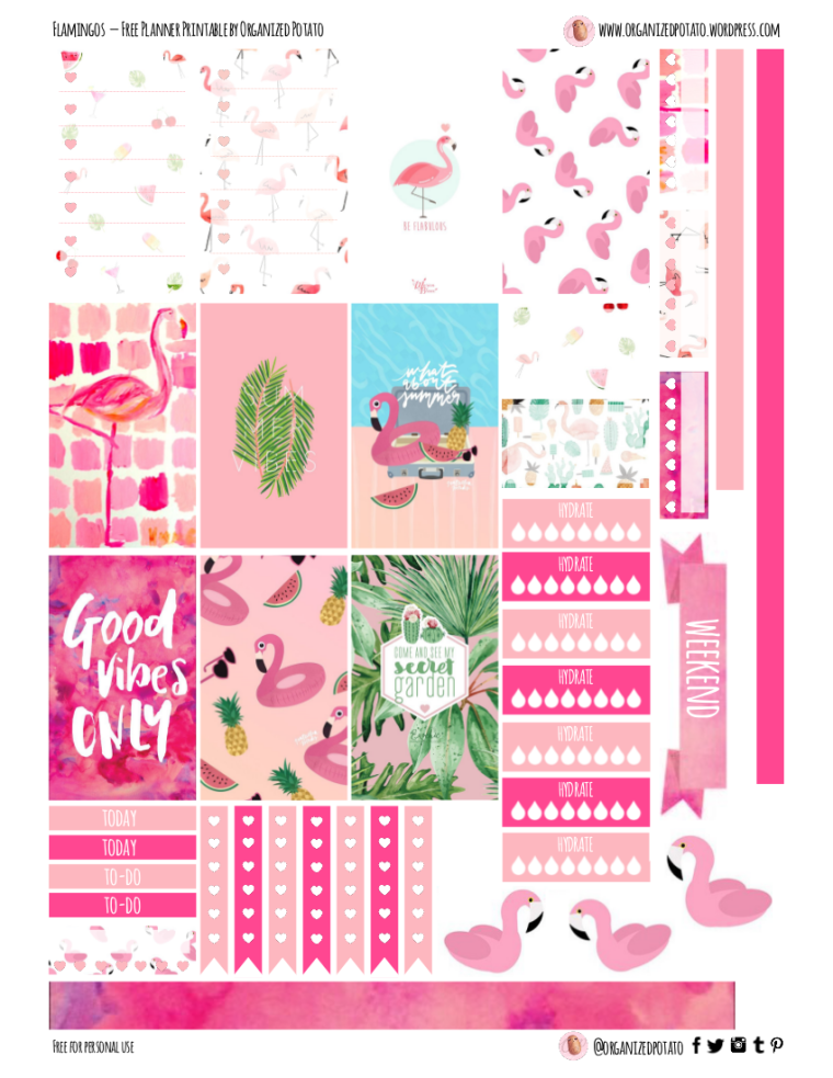 Flamingos - Free Planner Printable for HPC #freeprintable #printable #plannerprintable #happyplanner #flamingo #flamingos #pink #hotpink #summer #summervibes #goodvibes #goodvibesonly #pool #tropicalleaf #tropicalleaves #mambi #plannerstickers #plannerideas #plannerinspo #eclp #erincondren #filofax #kikkik #websterspages #travelersnotebook #organizedpotato