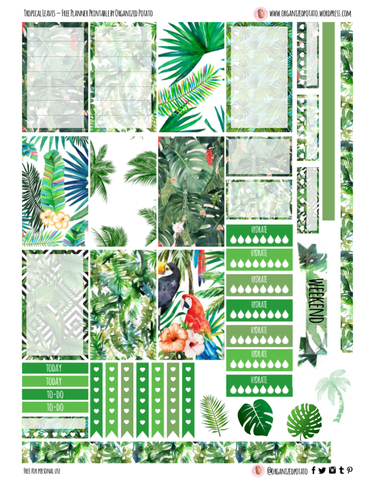 Free Planner Printable - Tropical Leaves | For Classic Happy Planner #freeprintable #plannerprintable #plannerprintables #freeprintables #happyplanner #tropical #tropicalleaves #tropicalleaf #leaf #leaves #green #leafy #monsteraleaf #monsteraleaves #organizedpotato #summer #summery #erincondren #kikkik #filofax #bujo #bulletjournal