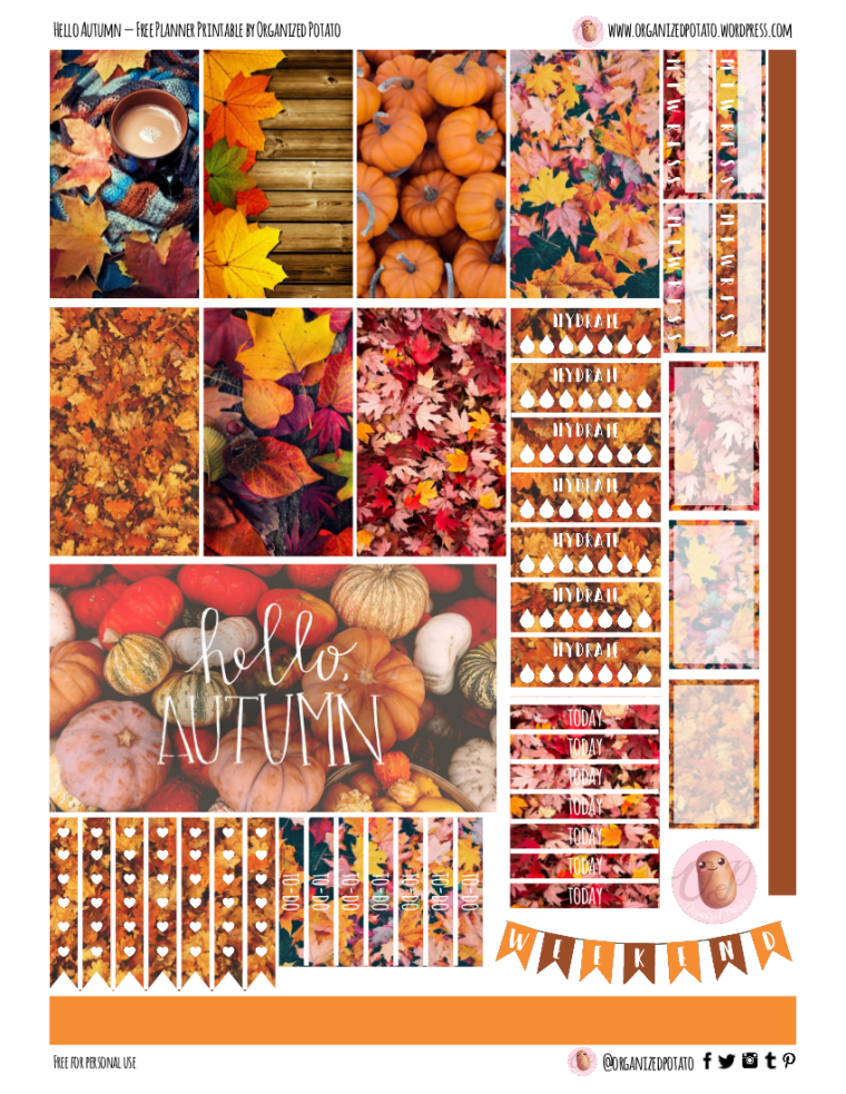 Hello Autumn - Free Planner Printable for Classic Happy Planner! #helloautumn #autumn #fall #printable #printables #freeprintable #freeprintables #freeplannerprintable #plannerprintable #happyplanner #mambi #fallleaves #autumnleaves #DIY #DIYplannerideas #plannerideas #plannerDIY