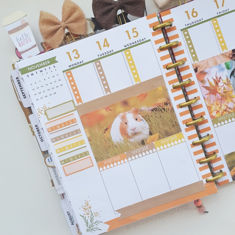 "Weekly Spread in my Classic Happy Planner- ""Furever Fall"" #planner #happyplanner #guineapig #guineapigs #fall #autumn #fallleaves #autumnleaves #orange #bows #pets #plannerprintables #printables #freeprintables #erincondren #filofax #bulletjournal #bujo #bujoideas #bujoinspo #plannerprintables #plannerinspo"